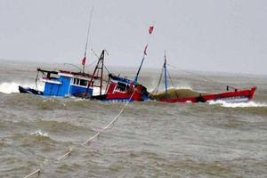 Hơn 150 thuyền viên, ngư dân được cứu nạn trên biển