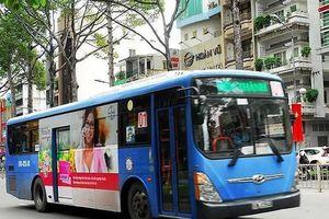 TP.HCM: Thanh tra toàn bộ hoạt động của xe buýt