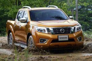 Triệu hồi hơn 600 xe bán tải Nissan Navara