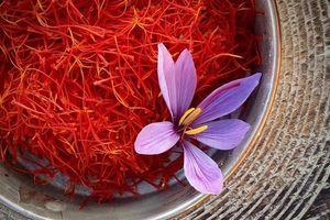 Vì sao saffron là gia vị đắt nhất thế giới, hơn 10.000 USD/kg?