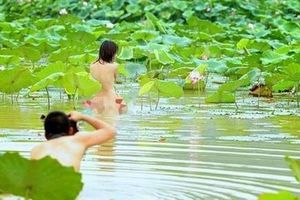 Hà Nội chấn chỉnh chụp ảnh phản cảm với sen Hồ Tây