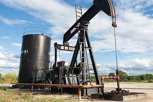 Giá xăng dầu hôm nay 14/6 đồng loạt tăng mạnh