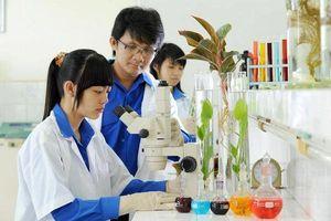 5 chuyên ngành học sẽ mở rộng cơ hội việc làm cho sinh viên