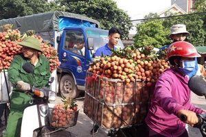 Bắc Giang: Xe tải tấp nập chở vải thiều đi 'xuất khẩu' và nụ cười quên nắng nóng
