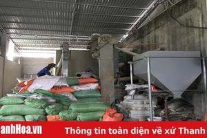 Cần giải quyết tình trạng xay xát lúa gây bụi và tiếng ồn trong khu dân cư tại xã Thiệu Tiến