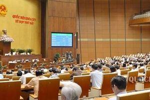 Phó Chủ tịch Quốc hội Uông Chu Lưu làm Trưởng đoàn giám sát về phòng, chống xâm hại trẻ em
