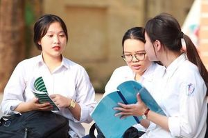 Đà Nẵng không có thí sinh đạt điểm 10 Ngữ văn vào lớp 10