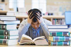 Áp lực mùa thi - đừng để trẻ bị stress
