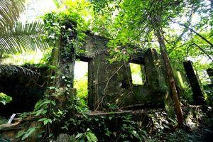 Hòa vào thiên nhiên Vườn Quốc gia Ba Vì