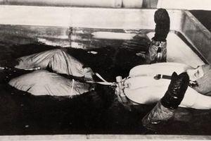 Hãi hùng thí nghiệm đóng băng cơ thể của phát xít Đức