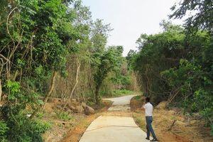 Tranh cãi về công trình cứu hộ 'sai phép' tại Di sản Phong Nha
