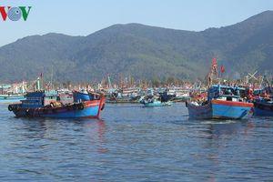 Tàu cá vi phạm về Đăng kiểm sẽ bị xử lý nghiêm khắc