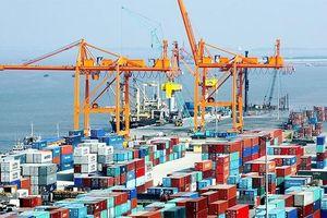Nhập khẩu hàng hóa Việt Nam tăng mạnh: 22 nhóm hàng đạt kim ngạch trên 1 tỷ USD