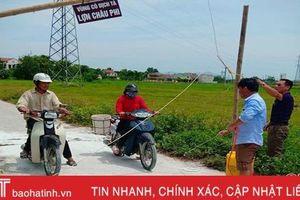 Thành phố Hà Tĩnh 'dính' dịch tả lợn châu Phi