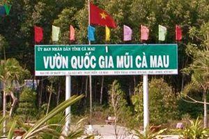 Thẩm định giá trị tài sản mất mát, hư hao tại Vườn Quốc gia Mũi Cà Mau
