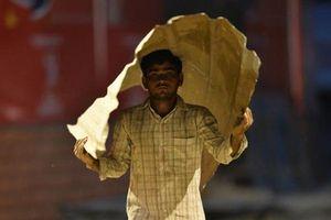 Ấn Độ nắng nóng nghiêm trọng làm hàng chục người thiệt mạng