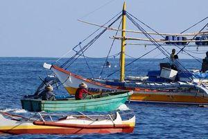 Phó Chánh án Tòa tối cao Philippines: Tàu Trung Quốc đâm tàu cá Philippines có thể là tàu dân quân 'đội lốt'