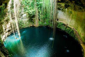 Bơi lội trong giếng thiêng của người Maya cổ đại