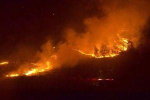 Cháy ngùn ngụt trên đồi thông ở Hà Tĩnh