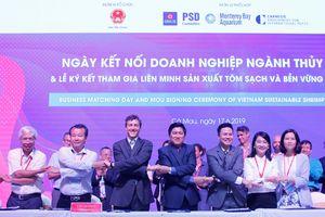 Các 'ông lớn' ngành tôm tham gia liên minh sản xuất tôm sạch và bền vững Việt Nam