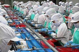 Thủy sản Minh Phú bị tố lẩn tránh thuế tại Mỹ