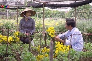 Về nhà đi con tập 46: Ông Sơn yêu cô bán hoa?