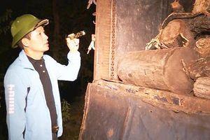 Đắk Lắk: Nhiều băng nhóm tội phạm bị triệt phá