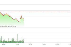 Chứng khoán sáng 17/6: Ngân hàng gắng gượng, VN-Index vẫn thủng 950