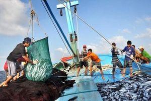Xử phạt vi phạm quy định về xuất, nhập khẩu thủy sản sống