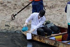 Trình diễn công nghệ xử lý bùn của Nhật Bản tại sông Tô Lịch
