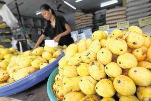 Philippines đau đầu vì thừa xoài do hiện tượng El Nino