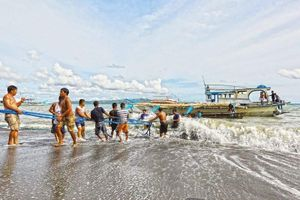 Tàu Philippines bị đâm chìm: Philippines sẽ triệu Đại sứ Trung Quốc