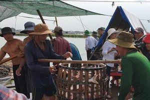 Đồng Tháp Mười: Hướng đến nuôi thủy sản bền vững