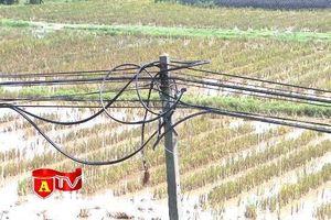 Cảnh giác với tội phạm trộm dây cáp viễn thông địa bàn ngoại thành Hà Nội