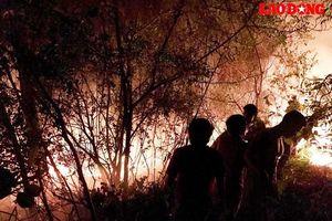 Nghệ An: Núi Quyết cháy dữ dội trong đêm