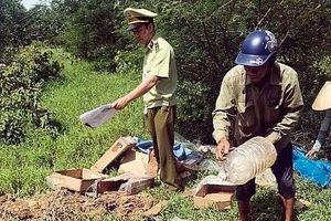 Quảng Ninh : Phát hiện và tiêu hủy 300 kg chân gà đông lạnh không rõ nguồn gốc