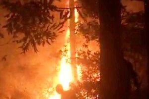 Hàng trăm người dân dập lửa cứu rừng trên núi Dũng Quyết