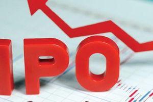 Tiếp tục triển khai cổ phần hóa, thoái vốn DNNN theo chỉ đạo của Chính phủ