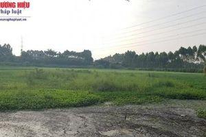 Công ty giấy Bãi Bằng bị 'tố' gây ô nhiễm môi trường
