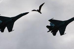 Chiến đấu cơ Nga Su-27, Su-30 bay tầm thấp nhìn từ buồng lái phi công