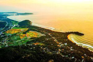 Mời ông Park Hang-seo làm đại sứ cho công viên địa chất Lý Sơn