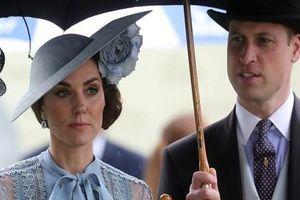 Xe hộ tống Hoàng tử William đâm trọng thương cụ bà 83 tuổi