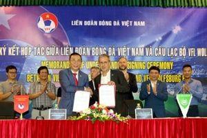 VFF và CLB VfL Wolfsburg ký kết hợp tác