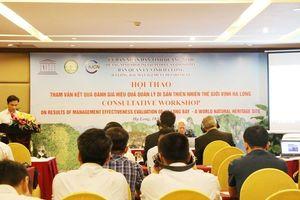 Chuyên gia hiến kế bảo vệ, phát triển vùng đệm di sản Vịnh Hạ Long