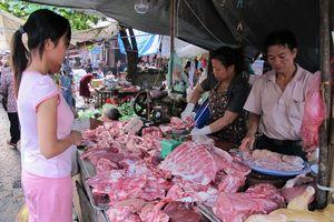 Giữa tâm dịch tả lợn châu Phi: Ồ ạt nhập khẩu thịt, gây khó ngành chăn nuôi