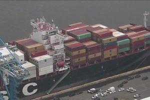 Mỹ thu giữ 16,5 tấn cocaine trên một tàu lớn tại cảng biển Packer