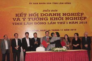 Lâm Đồng: Đào tại nâng cao năng lực quản lý, điều hành cho chủ doanh nghiệp