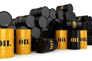 Giá xăng, dầu (19/6): Tăng nhẹ