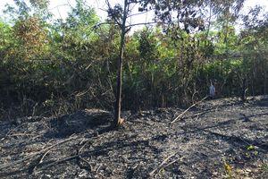 Cụ ông chết cháy thương tâm khi đốt rẫy để canh tác ở Đà Nẵng