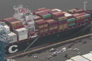 Mỹ tịch thu 16,5 tấn cocaine trị giá hơn một tỷ USD trên tàu hàng